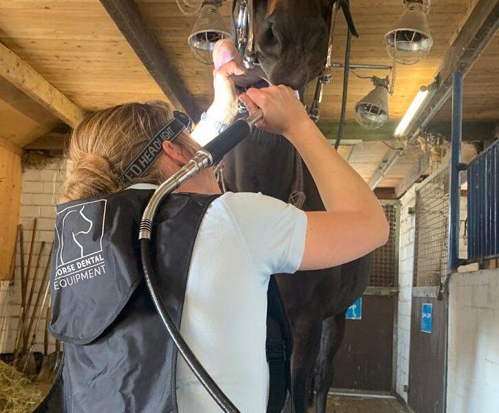 Tierarztpraxis Beel
